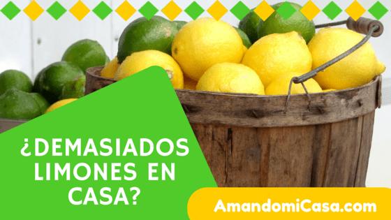 Demasiados limones en casa