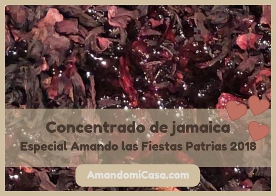 Concentrado de jamaica