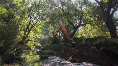Photo of Ciudadanía y gobierno trabajan en limpieza del río