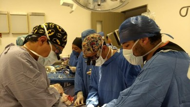 Photo of Querétaro destaca en donaciones y trasplantes a nivel nacional