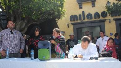 Photo of Activista de Amealco denuncia problemas ecológicos y políticos