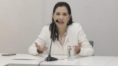 Photo of Advierte Elsa Méndez opacidad en legislatura