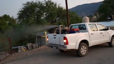 Photo of Secretaría de Salud mantiene actividades contra arbovirosis