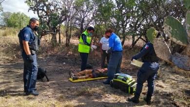 Photo of Encuentran hombre en estado de ebriedad con su ropa quemada
