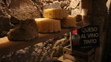 Photo of Gastrofest Querétaro te invita a conocer los mejores quesos de la región