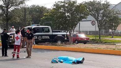 Photo of Muere atropellada por un camión en Paseo Central