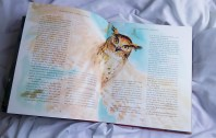 Harry Potter e a Pedra Filosofal Ilustrado – J. K. Rowling & Jim Kay