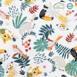aninaux-de-la-jungle-tropicale-toucan-paresseux