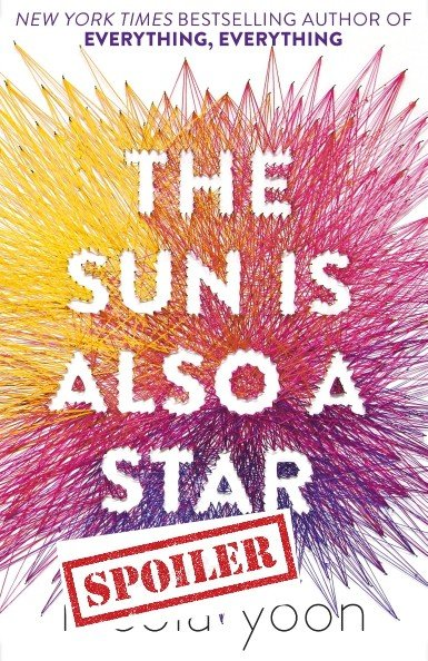 the sun is also a star summary and spoilers