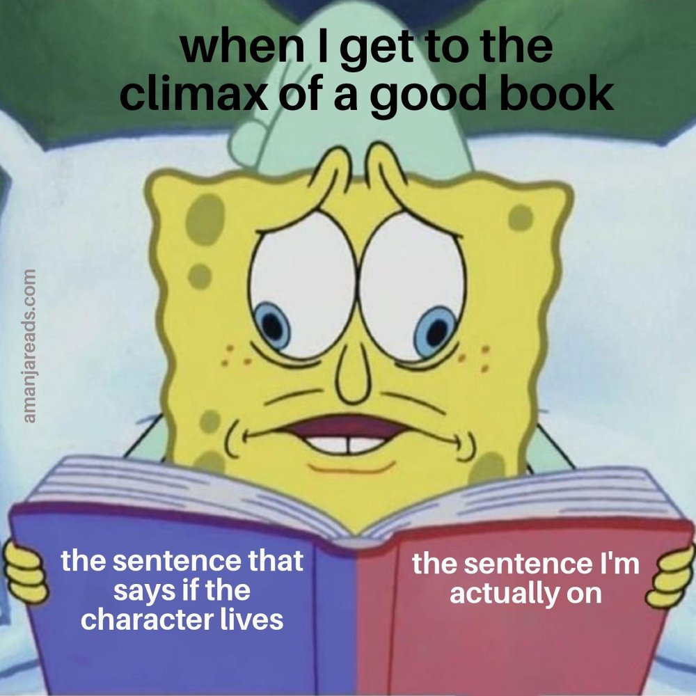 climax of a book meme