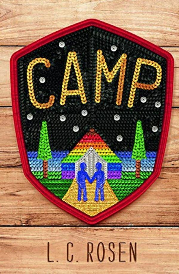 camp lgbtqia ya novel cover