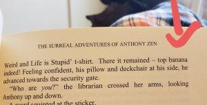 excerpt from the surreal adventures of anthony zen