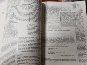 format example in house of leaves