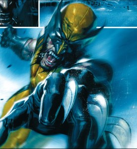 wolverine but really well drawn