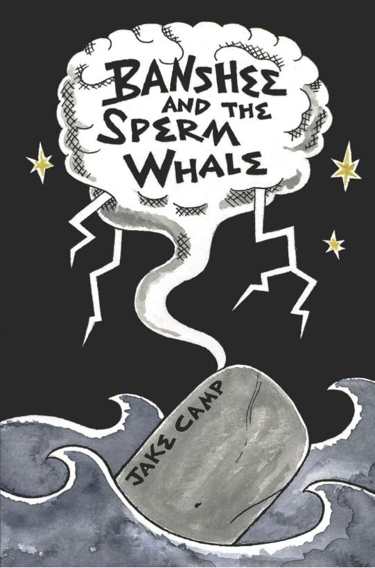 banshee and the sperm whale book cover