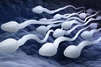 Qu'est-ce qu'un sperme