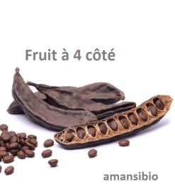 Comment soigner un fibrome avec le fruit à 4 côtés ...