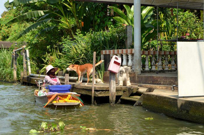 Promenade sur les klongs, le nom donné aux canaux