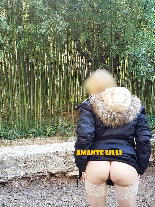 amantelilli-exhib-flashing-exhibition-jardin-parc-plantes-botanique-montpellier-sud-27