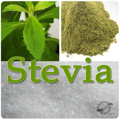 Stevia o Estevia  Sustituto del azcar  amantesdelacocina