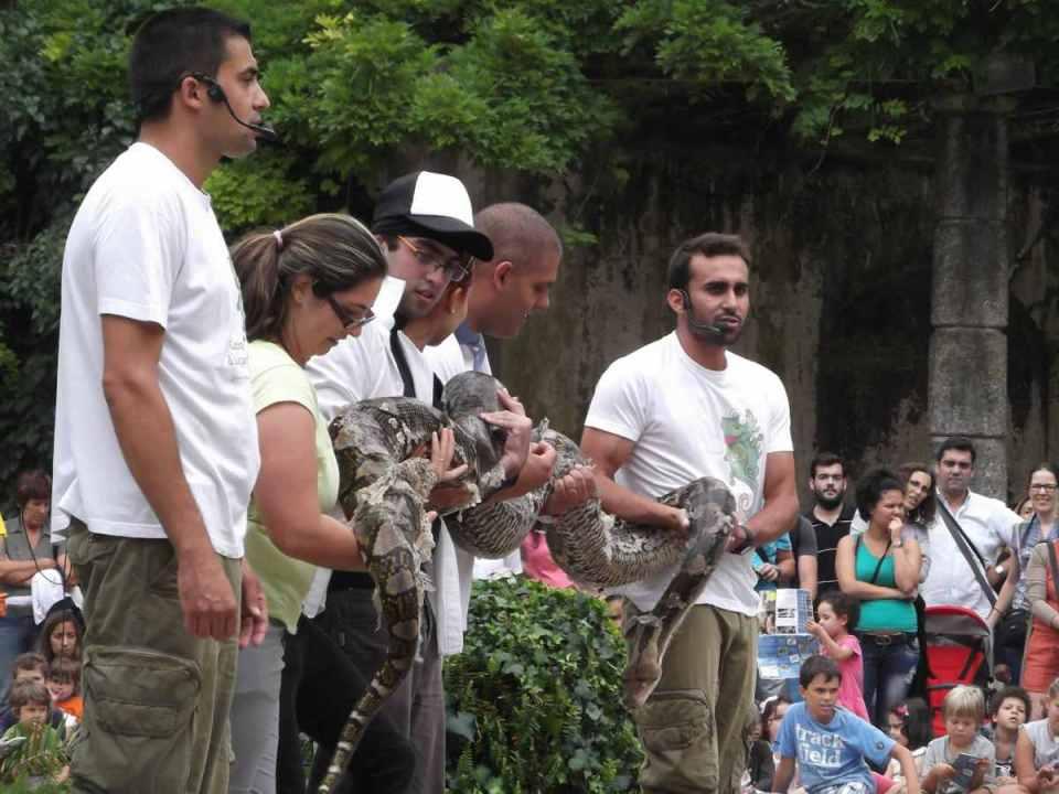 Apresentação de Répteis do Zoo