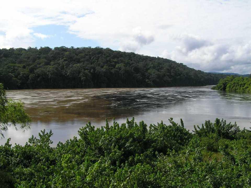 Floresta do Gabão