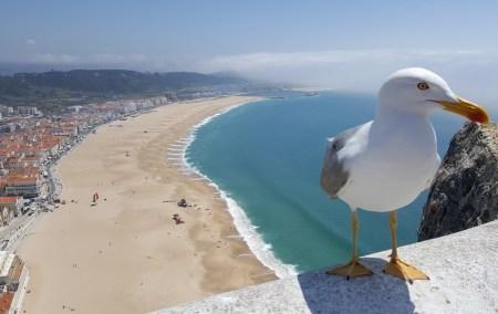 Sitio da Nazaré- Portugal
