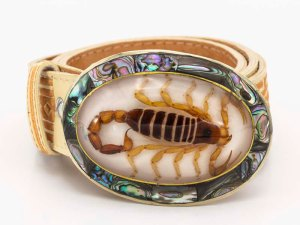 amantli-handmade-mexican-abalone-shell-belt-buckle-real-scorpion-white-096