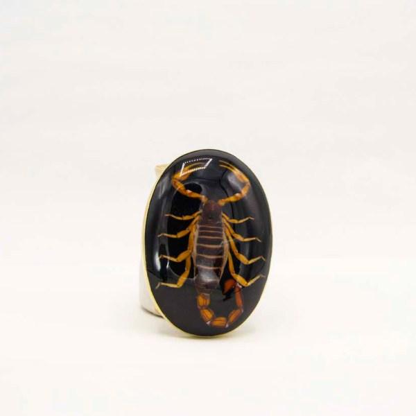 handmade-mexican-vintage-belt-buckle-real-scorpion-004