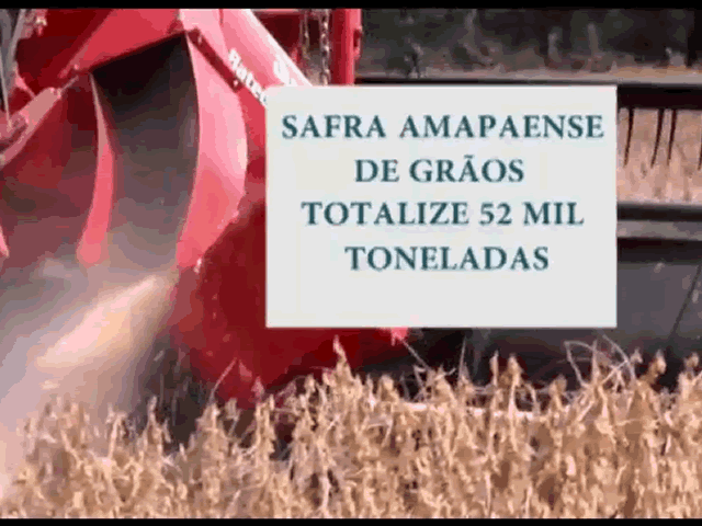 OCB Amapá Soja