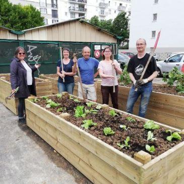 Lancement du jardinage devant le marché mercredi 12 juin