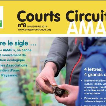 Courts-circuits n°8 – novembre 2018