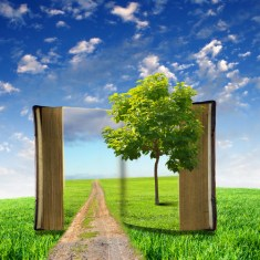An open book with green natural landscape inside