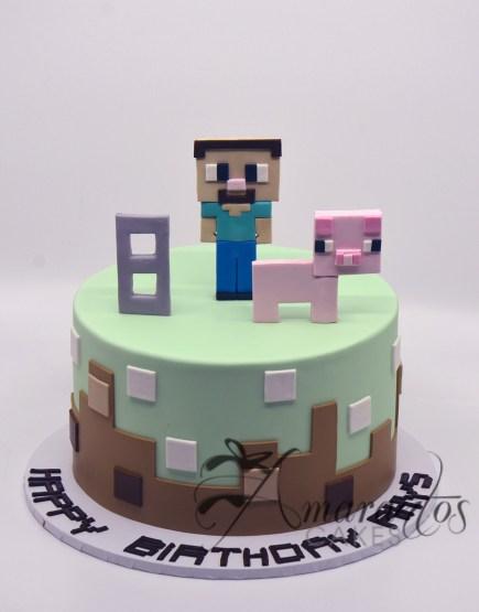 NC08 Minecraft cake Melbourne - Amarantos Cakes