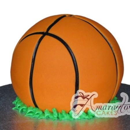 3D Basketball- NC228