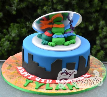 Teenage Mutant Ninja Turtle cake NC286