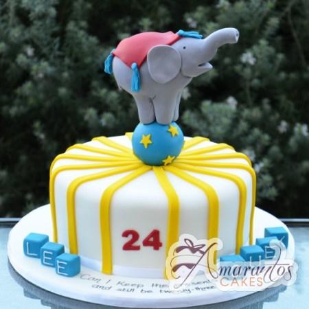 Circus cake with Elephant – NC466