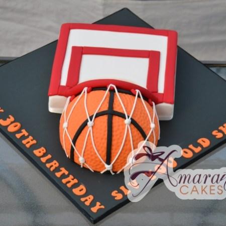 Basketball & Hoop – NC567