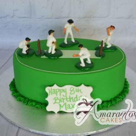 Cricket Pitch Cake- NC847