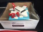 Airplane Cake - Amarantos Designer Cakes Melbourne