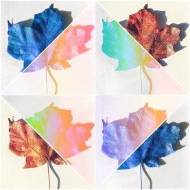 leaf collage reversed