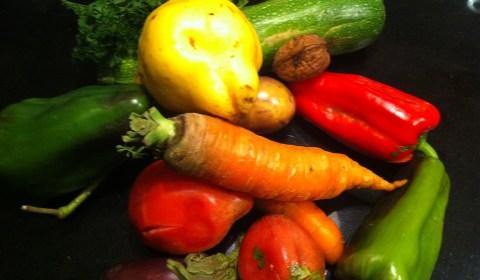 handpicked-organic-vegetables