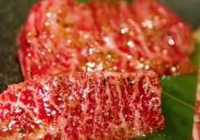 Carne VS Pesce  「肉対魚/ Niku tai Sakana」