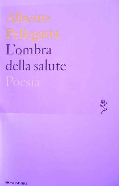 """""""Un mistero sconcio, meraviglioso"""". Su """"L'ombra della salute"""" di Alberto Pellegatta"""