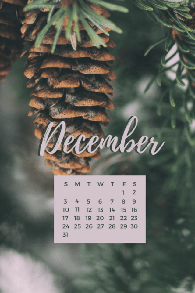 Freebie: December Desktop + Mobile Wallpaper 4