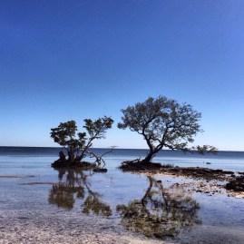 Calming Ocean View in Florida Keys