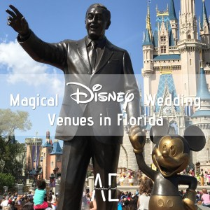 Magical-Disney-Wedding-Venues-in-Florida