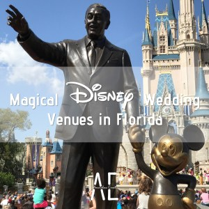 Magical Disney Wedding Venues in Florida