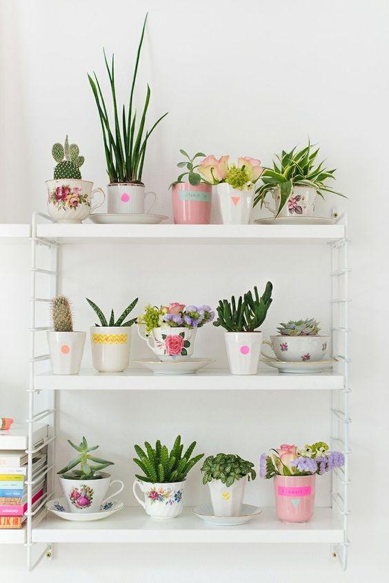 Etagere con fiori e piante