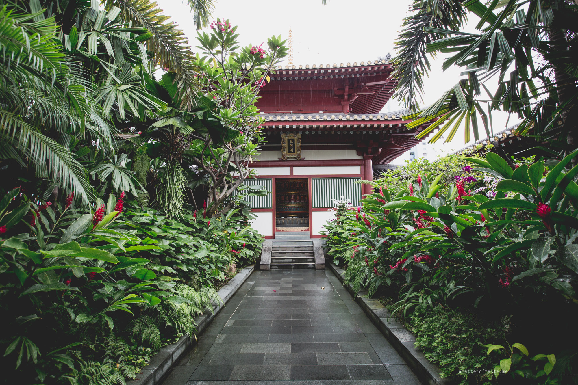 05-budda-tooth-relic-temple-rooftop-garden